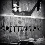 Spitting Pig Instagram