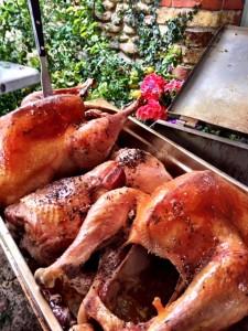 Lincolnshire - turkey